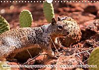 Zion Nationalpark (Wandkalender 2019 DIN A4 quer) - Produktdetailbild 3