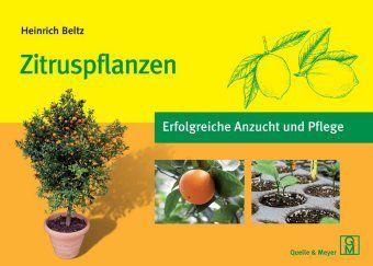 Zitruspflanzen - Heinrich Beltz  