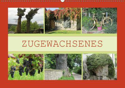 Zugewachsenes (Wandkalender 2019 DIN A2 quer), Angelika Keller