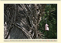 Zugewachsenes (Wandkalender 2019 DIN A2 quer) - Produktdetailbild 12