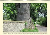 Zugewachsenes (Wandkalender 2019 DIN A3 quer) - Produktdetailbild 2