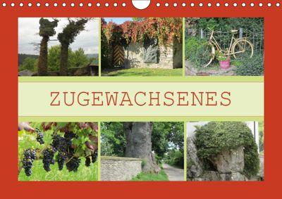 Zugewachsenes (Wandkalender 2019 DIN A4 quer), Angelika keller