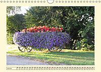 Zugewachsenes (Wandkalender 2019 DIN A4 quer) - Produktdetailbild 7
