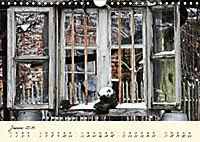 Zum rein gehen und raus gucken - Türen und Fenster (Wandkalender 2019 DIN A4 quer) - Produktdetailbild 1