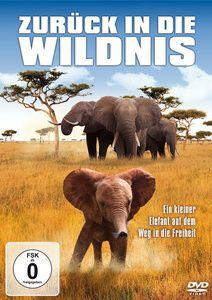Zurück in die Wildnis - Ein kleiner Elefant auf dem Weg in die Freiheit, Peter Dreckmann, Olaf Jacobs