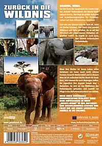 Zurück in die Wildnis - Ein kleiner Elefant auf dem Weg in die Freiheit - Produktdetailbild 1