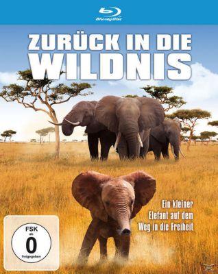 Zurück in die Wildnis - Ein kleiner Elefant auf dem Weg in die Freiheit, Daphne Dr.Sheldrick, Edwin Lusichi, Benjamin Kyalo