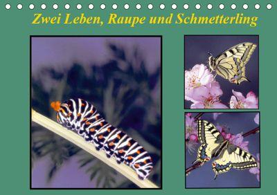 Zwei Leben, Raupe und Schmetterling (Tischkalender 2019 DIN A5 quer), Lothar Reupert