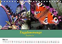 Zwei Leben, Raupe und Schmetterling (Tischkalender 2019 DIN A5 quer) - Produktdetailbild 5