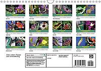 Zwei Leben, Raupe und Schmetterling (Wandkalender 2019 DIN A4 quer) - Produktdetailbild 13