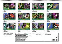 Zwei Leben, Raupe und Schmetterling (Wandkalender 2019 DIN A2 quer) - Produktdetailbild 13