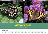 Zwei Leben, Raupe und Schmetterling (Wandkalender 2019 DIN A3 quer) - Produktdetailbild 1