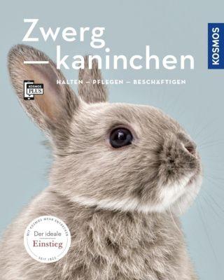 Zwergkaninchen - Angela Beck |
