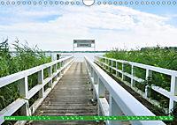 Zwischenahner Meer Momentaufnahmen (Wandkalender 2019 DIN A4 quer) - Produktdetailbild 7