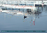 Zwischenahner Meer Momentaufnahmen (Wandkalender 2019 DIN A3 quer) - Produktdetailbild 9