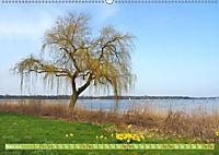 Zwischenahner Meer Momentaufnahmen (Wandkalender 2019 DIN A2 quer) - Produktdetailbild 3